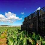Nou programa en FOOD & IoT impulsat per la UPC School, l'Ajuntament de Viladecans, La Salle Technova i Mercabarna